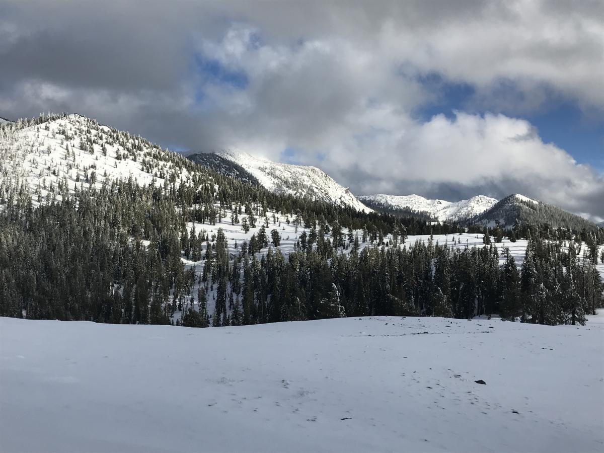 Deadfall Lakes drainage from Park Creek summit