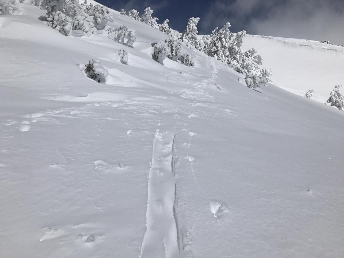 wind loading quickly filling in recent tracks