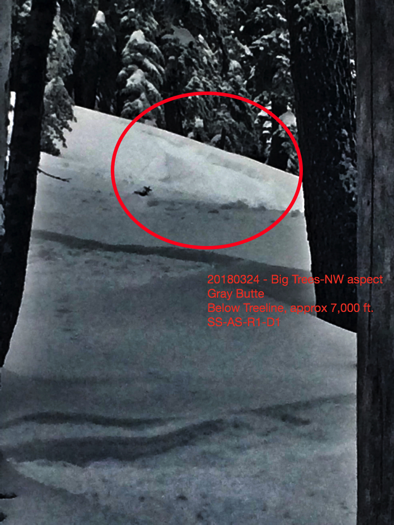Small skier triggered storm slab on northwest aspect of Gray Butte